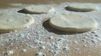 Meat pasties dough discs