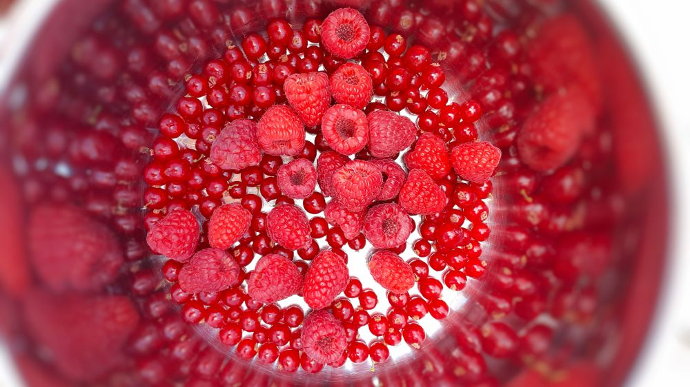 Red currants and raspberries